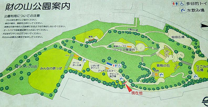 財の山公園